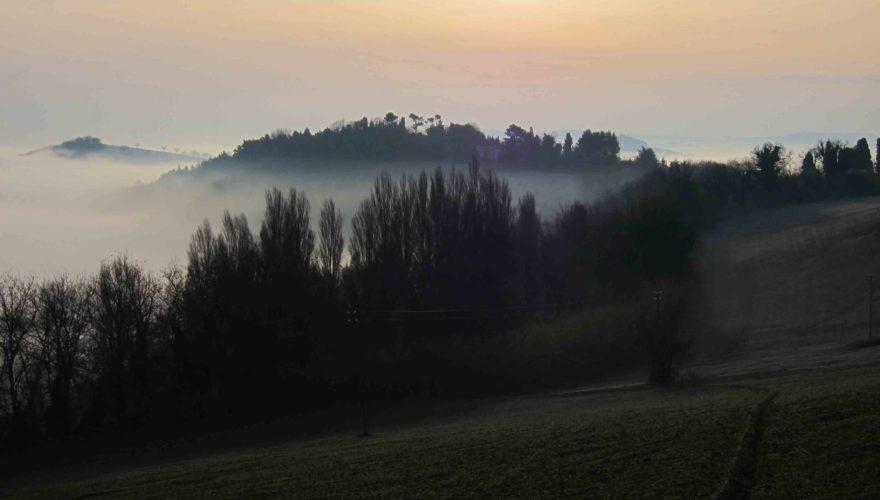 Tartufo tra Marche e Romagna